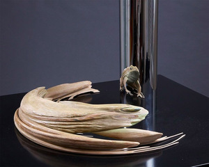 Eye candy the anamorphic jonty hurwitz for 3d sculpture artists