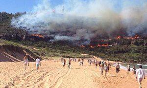 Northern beaches bushfires