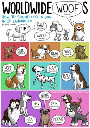 Animal-Sounds-in-Different-Languages-Dog-685x968