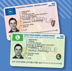 Driver's licence renewal | Broadsheet ie