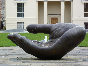 birdhand2