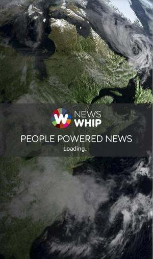 newswhip2