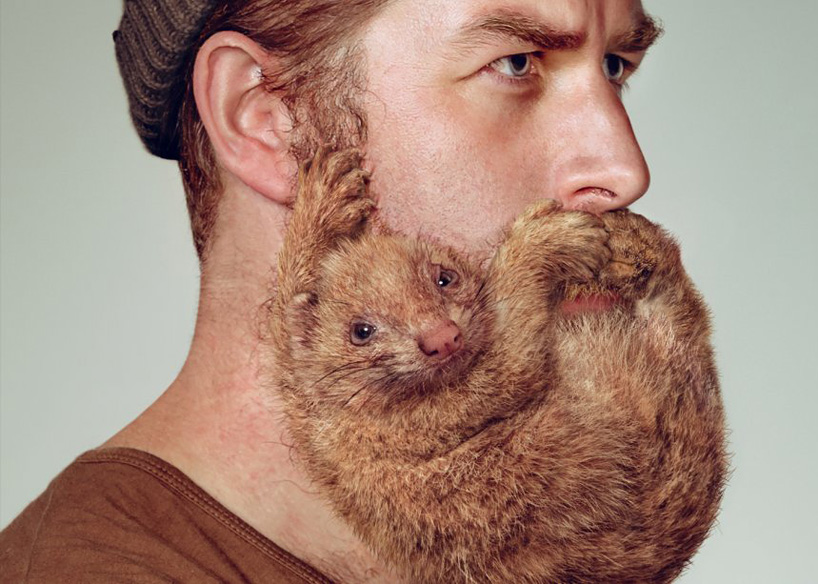 schick-free-your-skin-animal-beards-designboom-01