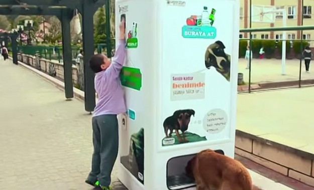 stray-dog-food-vending-machine-recycling-pugedon-4