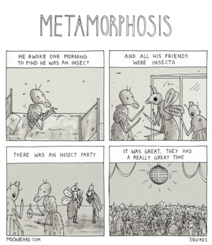 2014-09-19-metamorphosis