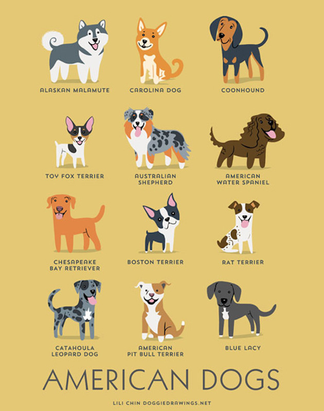 Illustrated-Guide-to-Dogs-of-the-World