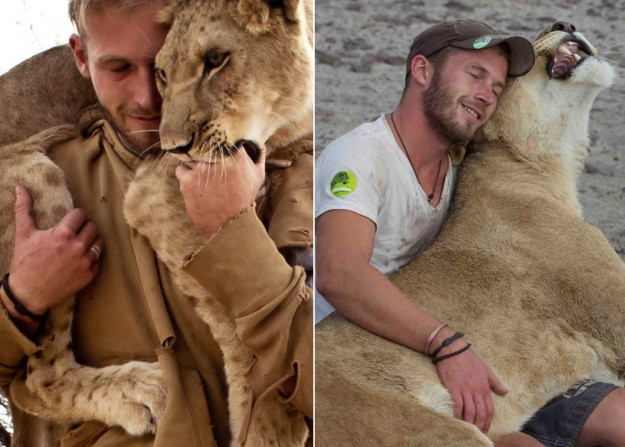 Singa Yang Memeluk Penyelamatnya