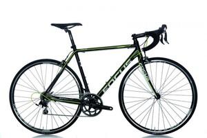 Ross's Bike-1