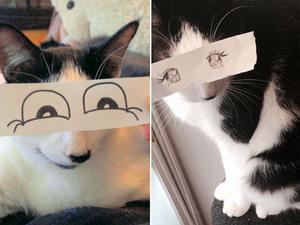anime-cat9