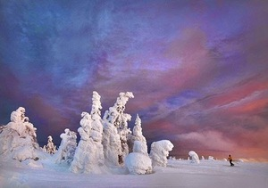 Frozen-Trees-Photography-2