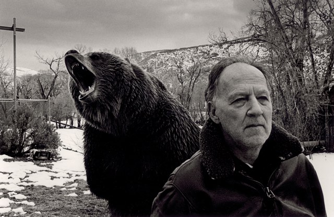 werner-herzog-bear
