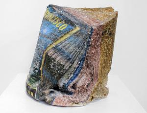 alexis-arnold-crystallized-books-designboom-03