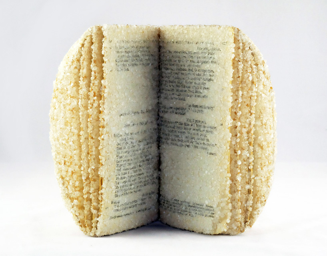 alexis-arnold-crystallized-books-designboom-20