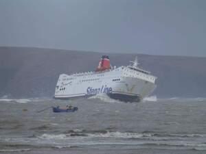 Ferry Uk Ireland Dog