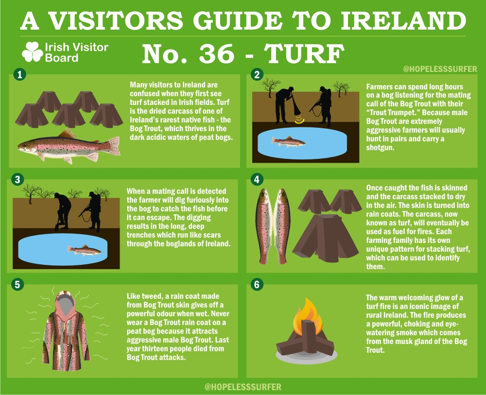 Guide To Turf