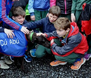 Cu-Abu-meeting-pupils-from-Gaelscoil-Chill-Dara