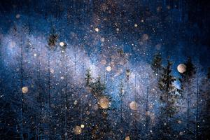 Diamonf Dust by Masayasu Sakuma