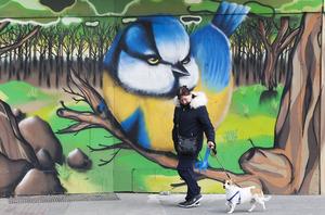 1443 Mural Dublin_90509153