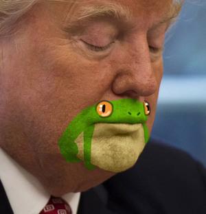 frogman2