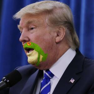frogman5