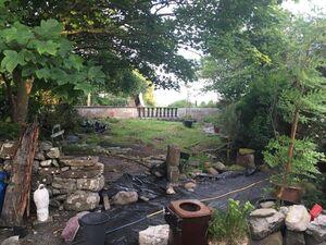Gardening Leave | Broadsheet.ie