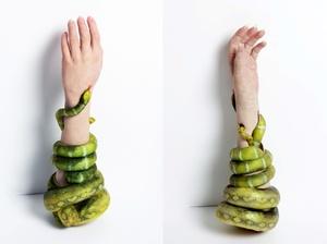 snakearm