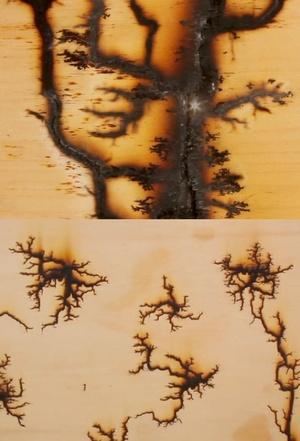 woodvolts