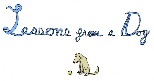 Lessons-from-a-Dog-01-e1367841228537-634x336