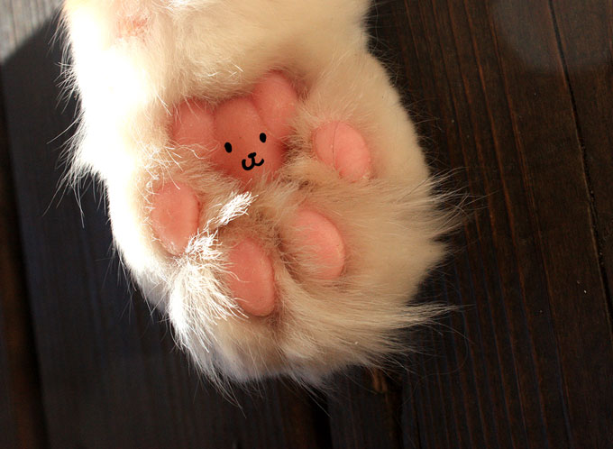 Cat-paw-bear