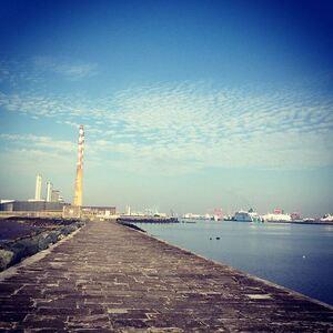 Dublinn