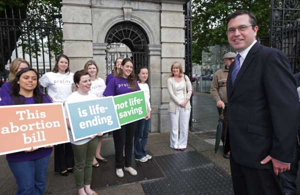 02/07/2013. Abortion legislation vote. Rebel Fine