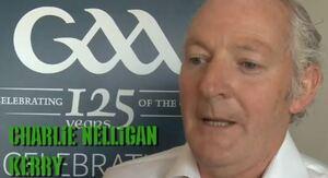 Nelligan2010