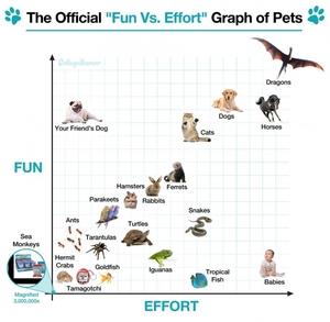 small_fun vs effort graph of pets