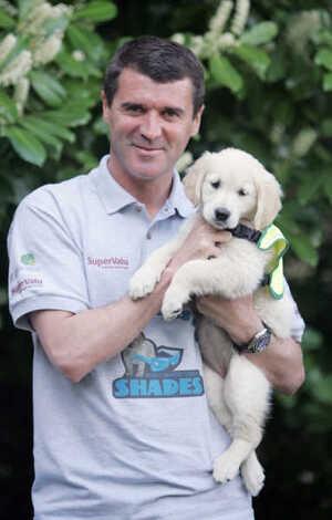 29/4/2010 Irish Guide Dogs