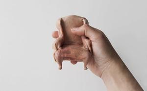 skin-sculptures-by-jessica-harrison-designboom-09