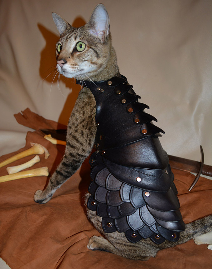 Cat-Battle-Armor