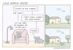 wild-koala-house