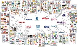 Food-Corporations-011-685x415