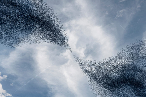 alain-delorme-murmurations-bird-conducting-designboom-01