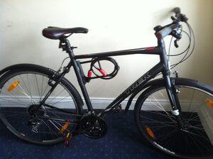 gregs bike