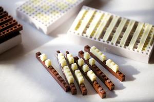 Functional-Chocolate-LEGO-Blocks-by-Akihiro-2