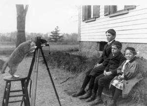Cat-Photographer-1