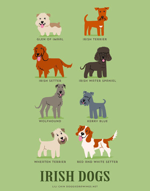 Illustrated-Guide-to-Dogs-of-the-World-7