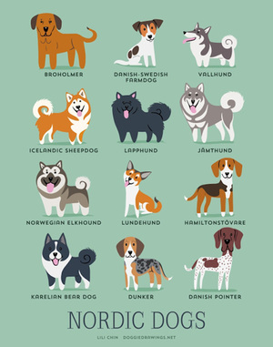 Illustrated-Guide-to-Dogs-of-the-World-9