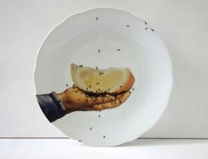 ants-5
