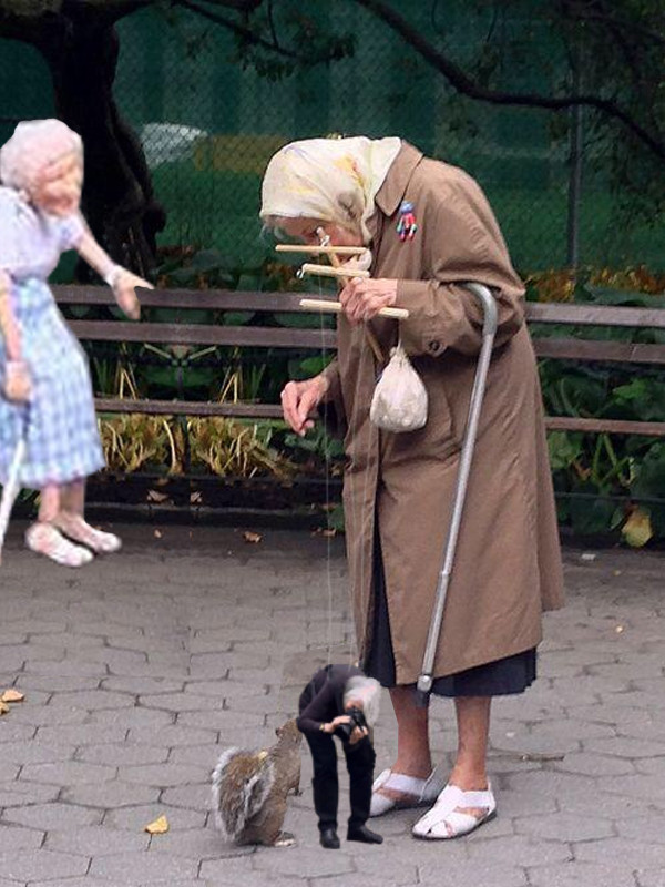 I Hate Monday Images Old Lady, Squirrel, Pu...