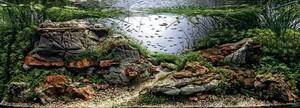 aquarium-12