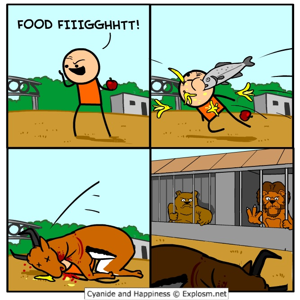 fightyfiigghh