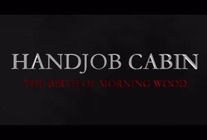 handjob-cabin