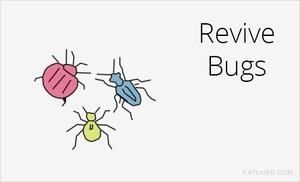 power-bugs